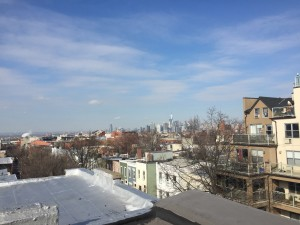 Park Slope Rooftop View Townhouses